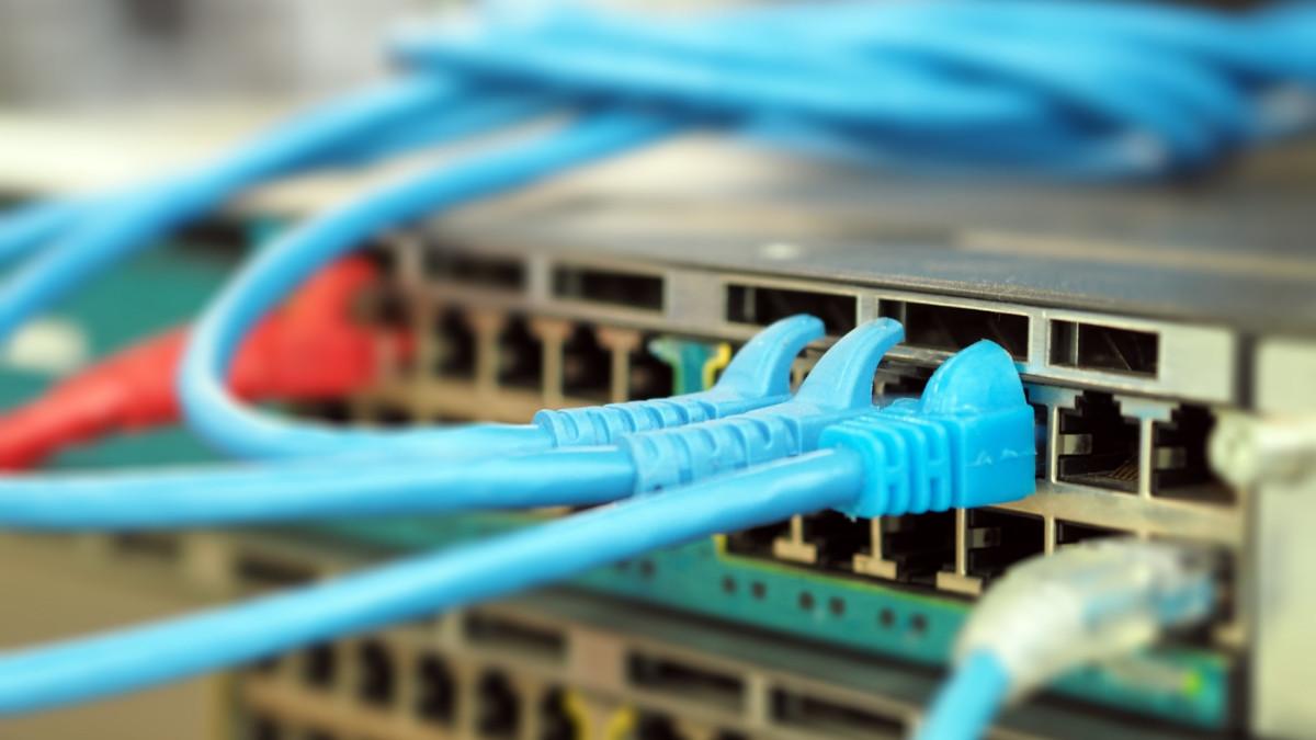 Você sabe o que é trabalho em rede?